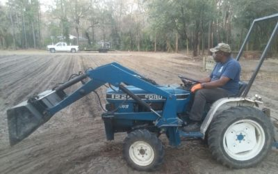 African American Church Community Garden and Food Security Project in South Carolina